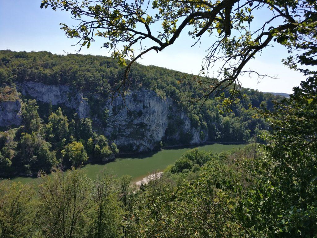 Blick vom Wald aus auf die Donau samt Kalksteinfelsen.