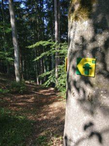 Schild am Baum, das den Limesweg kennzeichnet.