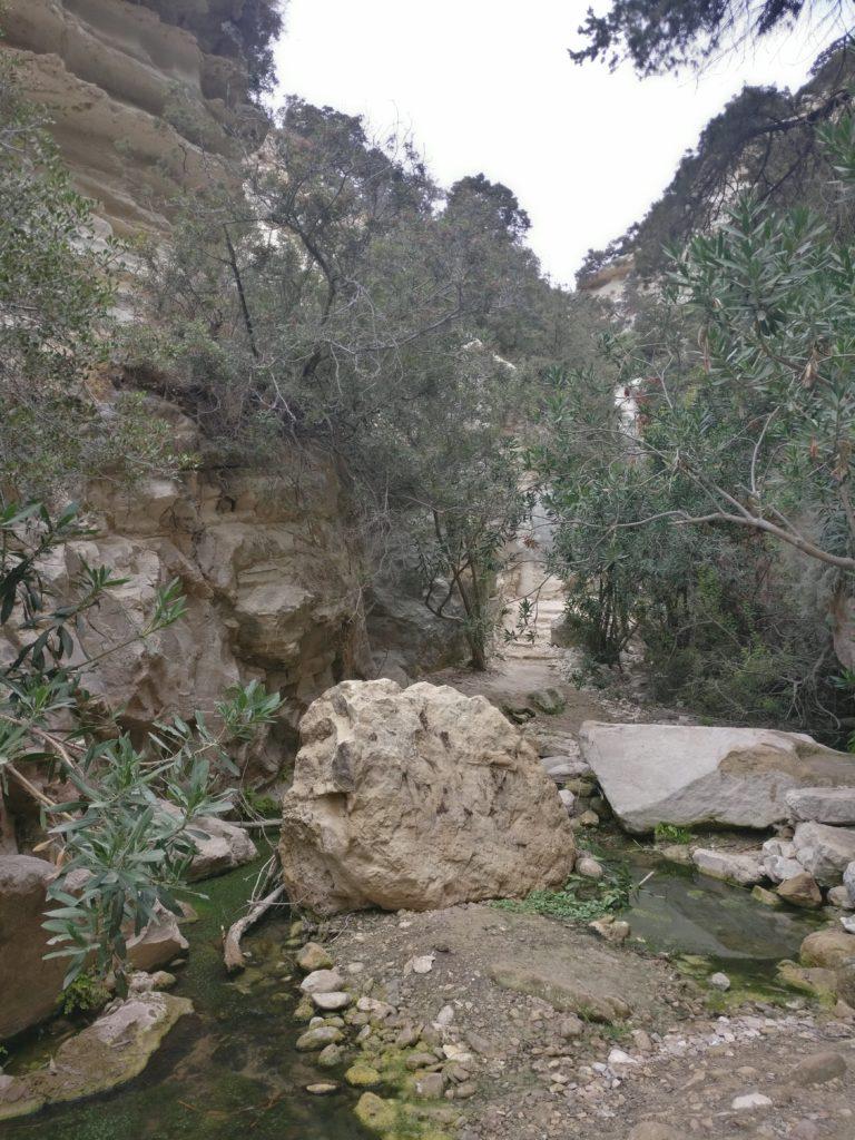 Auf dem Weg zur Schlucht: Steine, Treppen und zu überquerendes Wasser.