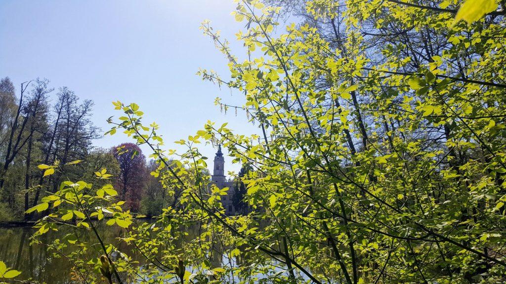 Blick zwischen grünen Ästen auf den Turm des Schloss Dammsmühle.