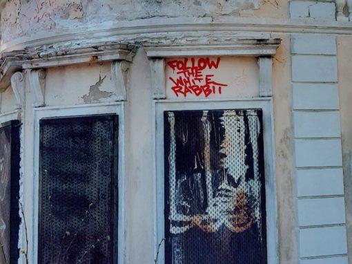 Graffiti auf Englisch: Folge dem weißen Kaninchen.