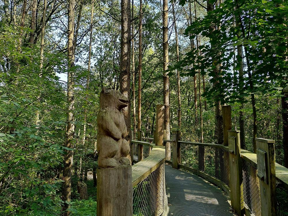 Brücke im Bärenwald Müritz mit Bärenfigur.