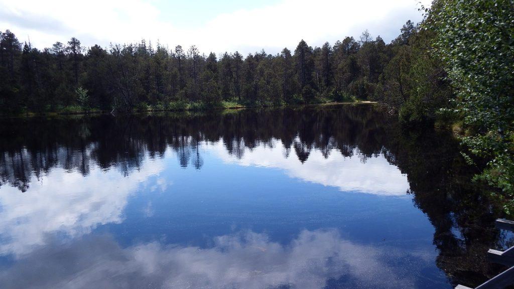 See eingerahmt von Bäumen und so still, dass sich der Himmel und die Wolken darin spiegeln.