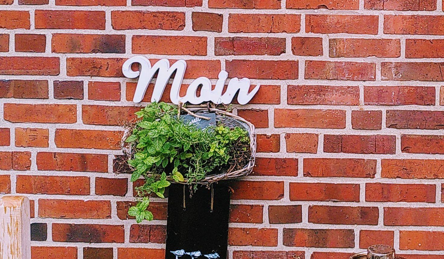 Moin-Schild an roter Ziegelmauer mit grünem Pflanzentopf